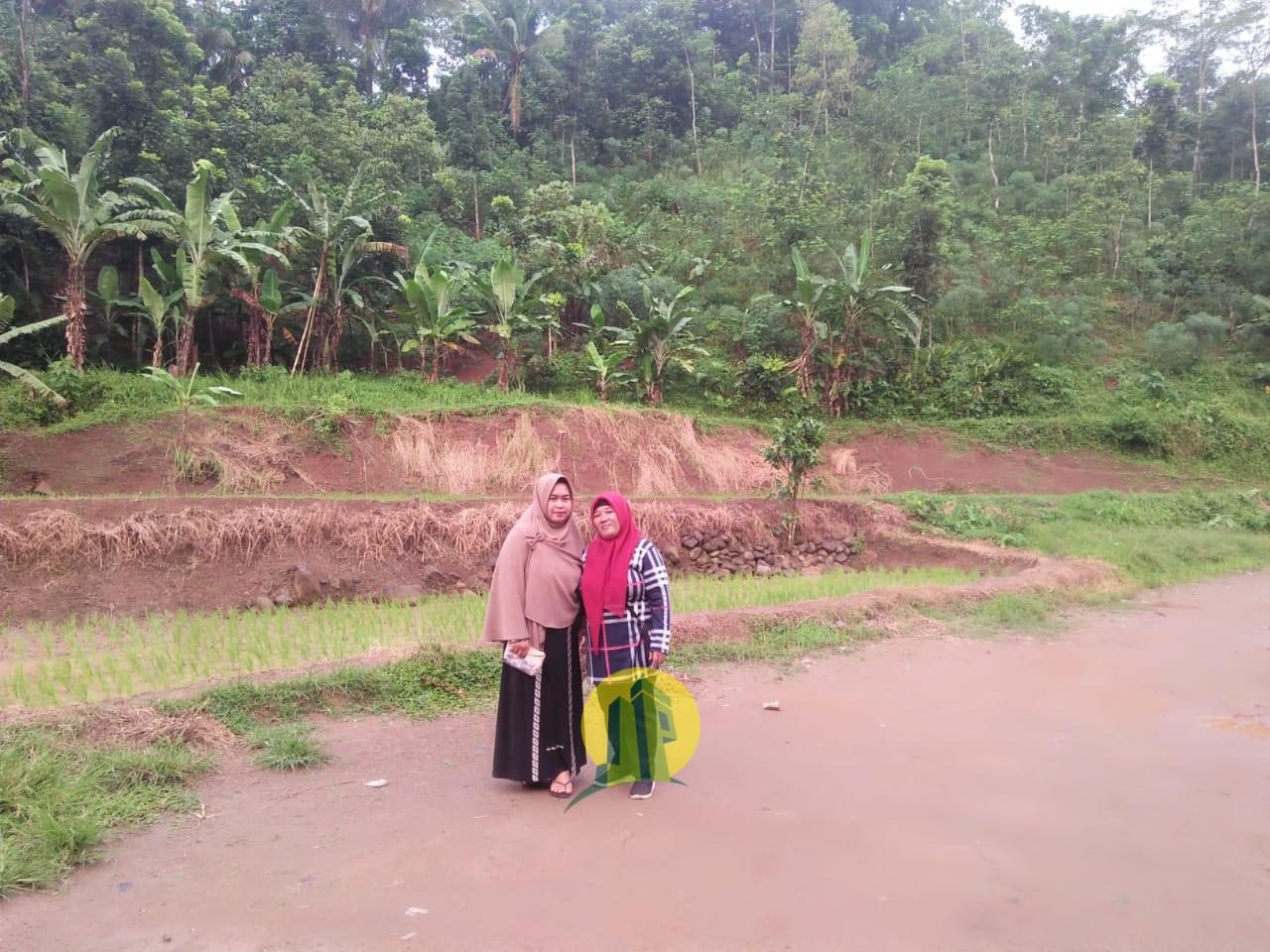 Dijual Tanah di Sukasari Rumpin Bogor