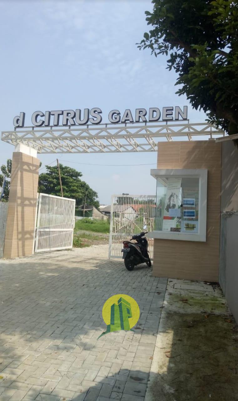 D'Citrus Garden 2 (21).jpeg